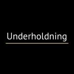 Underholdning_500x500_underline